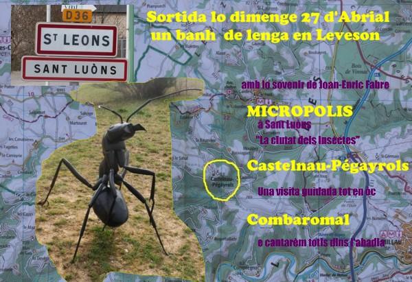 Aficha Micropolis